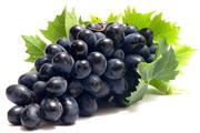 Продаются саженцы винограда